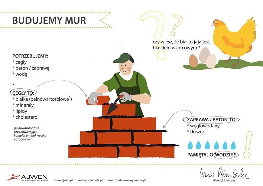 budujemy mur wg ajwen - iwona wierzbicka 1