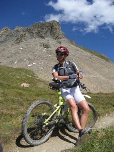 Wierzbicka rower