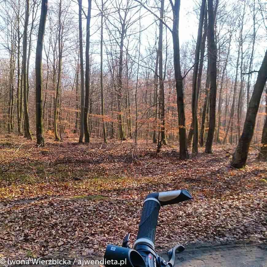 wiosna idzie - iwona wierzbicka na rowerze