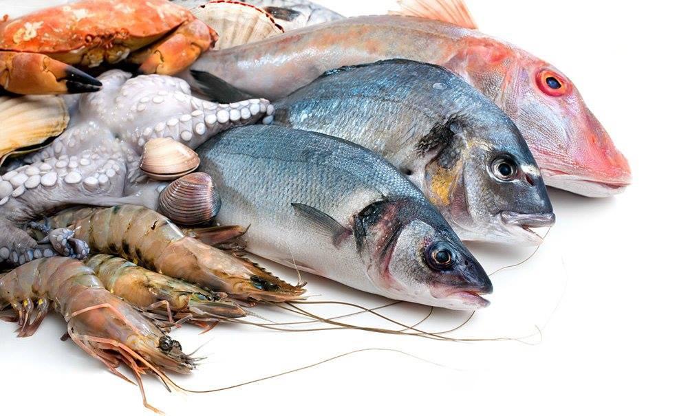 ryby-ajwendieta.jpg