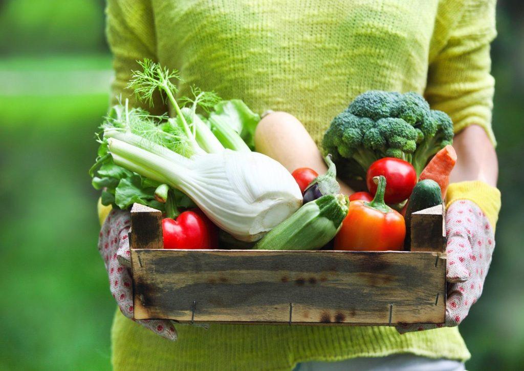 odzywcze-produkty-w-diecie-ajwendieta