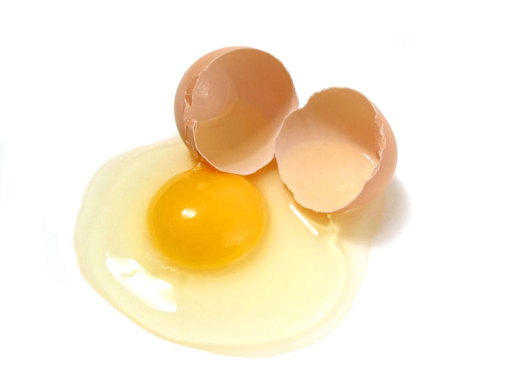 białka