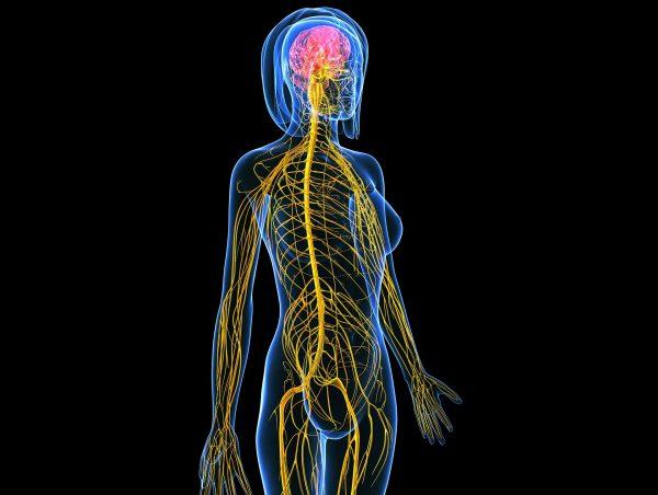 zaburzenia endokrynne