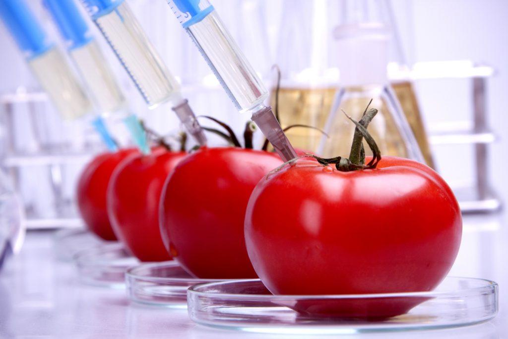 Pomidory z chemią